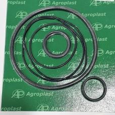 Ремкомплект большого фильтра Agroplast KUFD |222954|