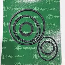 Ремкомплект малого фильтра опрыскивателя Agroplast KUF |222862|